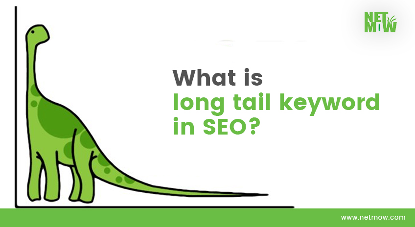 What is long tail keyword in SEO?